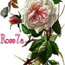 rose7a's profile picture