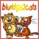 bluridge2cats's profile picture