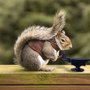 Blacksmith_squirrel_thumb128
