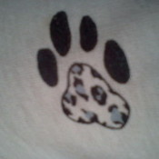 rlaha1's profile picture