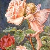 Fairy child 2 thumb175