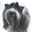 bagilicious's profile picture