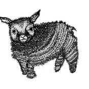 Goatbb thumb175