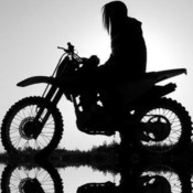 bluestang03's profile picture