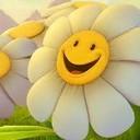 Daisy smiley thumb128