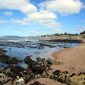 Central coast tide pools thumb175
