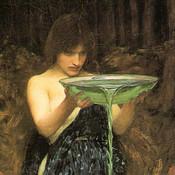 circescoven's profile picture