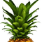 PineappleDays's profile picture