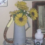 Flowers in grandpa s oil can thumb175