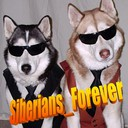 Siberians_Forever's profile picture