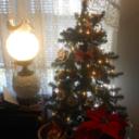 zanestreazures_2015's profile picture