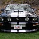 Black stripes thumb128