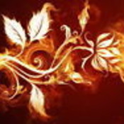 WishingForClaudia's profile picture