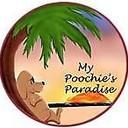 MyPoochiesParadise's profile picture