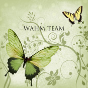 WahmTeam's profile picture