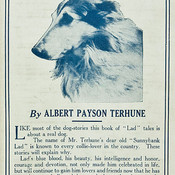 380px lad a dog  1919  thumb175