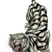 Tiger tat thumb175