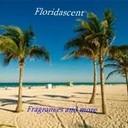 M beach palms scape 3 thumb128