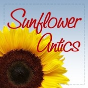Sunflower antics avatar 250 x 250 2016 thumb175