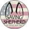 Saving_Shepherd's profile picture