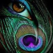 SanteriaMagicShop's profile picture