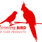 morning_bird's profile picture