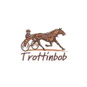trottinbob's profile picture