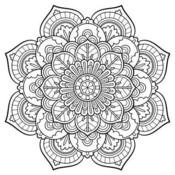 vendela13's profile picture