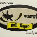 Logo starw5 thumb128