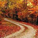 Autumnpath thumb128