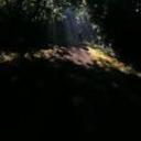rkerwood's profile picture