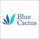 BlueCactusTexas's profile picture