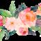 Cof flowers thumb48