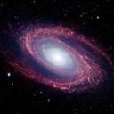 Andromedaspike thumb128