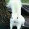 VintageTimes2's profile picture