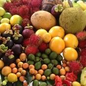 Exotic tropical fruit thumb175