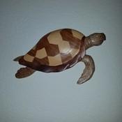 TurtleCreamBeans's profile picture