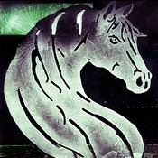 whitehorseba's profile picture