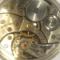 Rhino_watches's profile picture