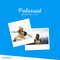 Weareprint feature web polaroid mix 2 thumb48