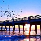 Jacksonville beach pier th thumb175
