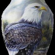 enamels's profile picture