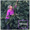 FarmGurlScavenger's profile picture