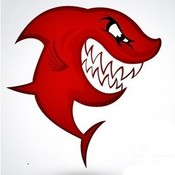 little_red_shark's profile picture
