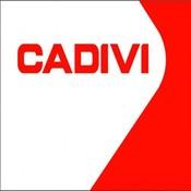 daycadivi's profile picture