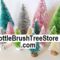 Bottle_Brush_Trees's profile picture