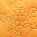 KimotExpo's profile picture