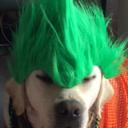 Saujack's profile picture