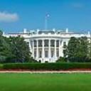 Washington_Scene's profile picture