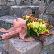 fleursmaroc's profile picture